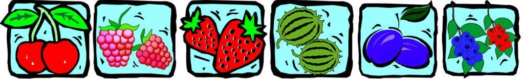 Kirschen, Himbeeren, Erdbeeren, Stachelbeeren, Pflaumen, Mirabellen, Reneclauden, Johannisbeeren